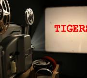 proiezione TIGERS